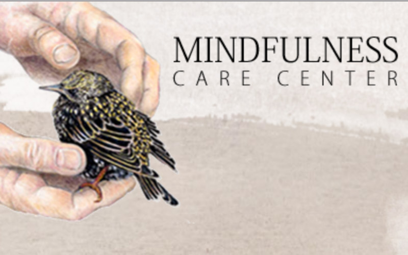 Mindfulness Care Center