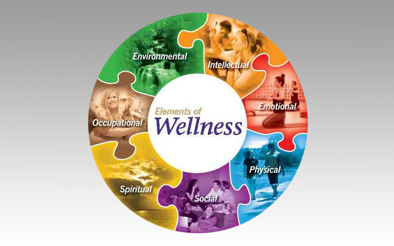 WELLNESS:  From Movement to Profession
